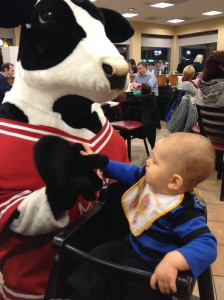 Not sure what to think about the Chick-Fil-A cow.