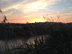 Sunset in Montijo